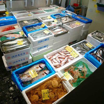 寿司種向け鮮魚