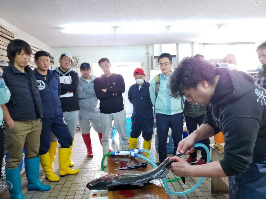 島根県浜田漁港にて『津本式究極の血抜き』講習会を行いました。